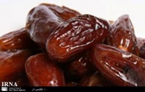 فروش خرما و رطب شهر خشت فارس با کمترین قیمت
