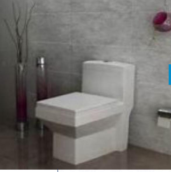 توالت فرنگی بیده