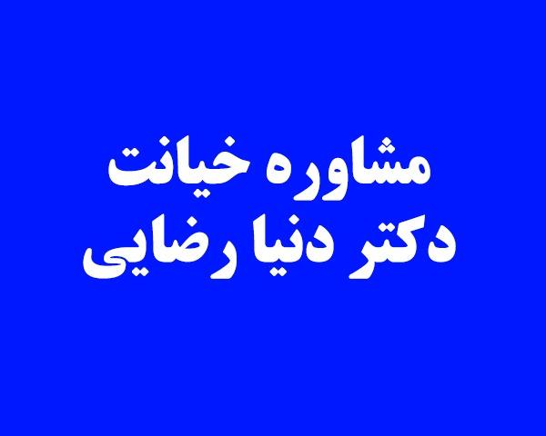 مشاوره خیانت در تهران