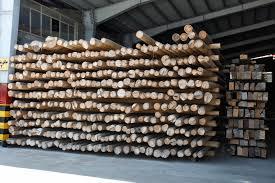 فروش تیر برق چوبی