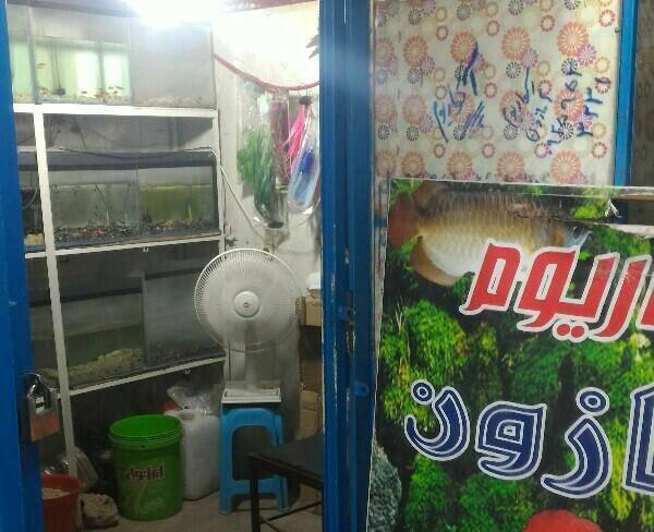 فروش یک باب مغازه در مرکز شهر